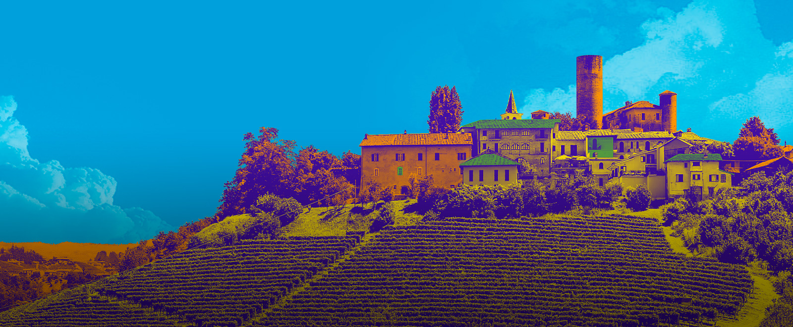 Bilancio Territoriale del Piemonte